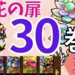 【ドラクエタクト】開花の扉 第30巻 シドーなしクリア