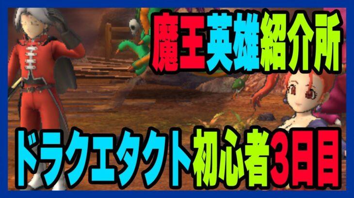 【ドラクエタクト】3日目の初心者が魔王英雄紹介所で一人選んでいく!